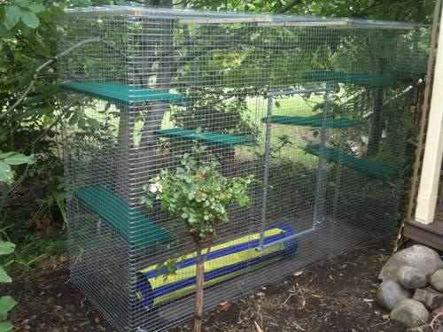 Cat Enclosures Outdoor Cat Tunnels And Cat Proof Fencing