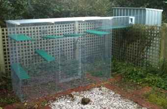 Cat Enclosures | Outdoor Cat Tunnels and Cat Proof Fencing